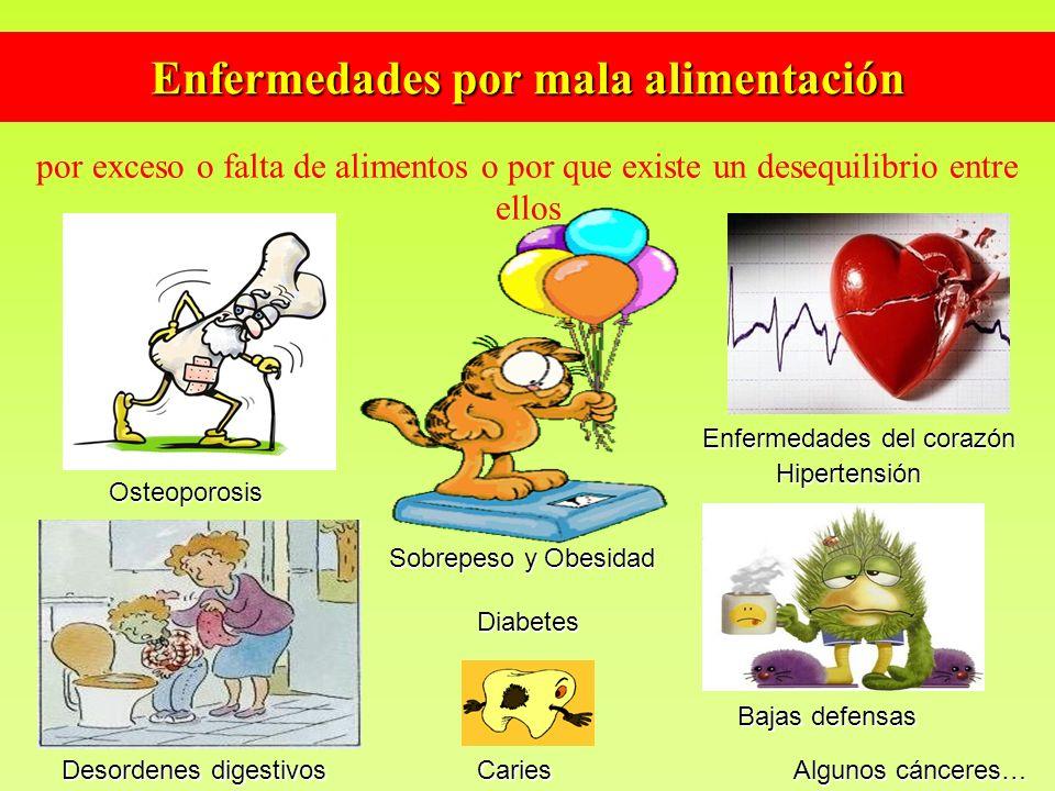Enfermedades por mala alimentación por exceso o falta de alimentos o por que existe un desequilibrio entre ellos Sobrepeso y Obesidad Diabetes Diabete