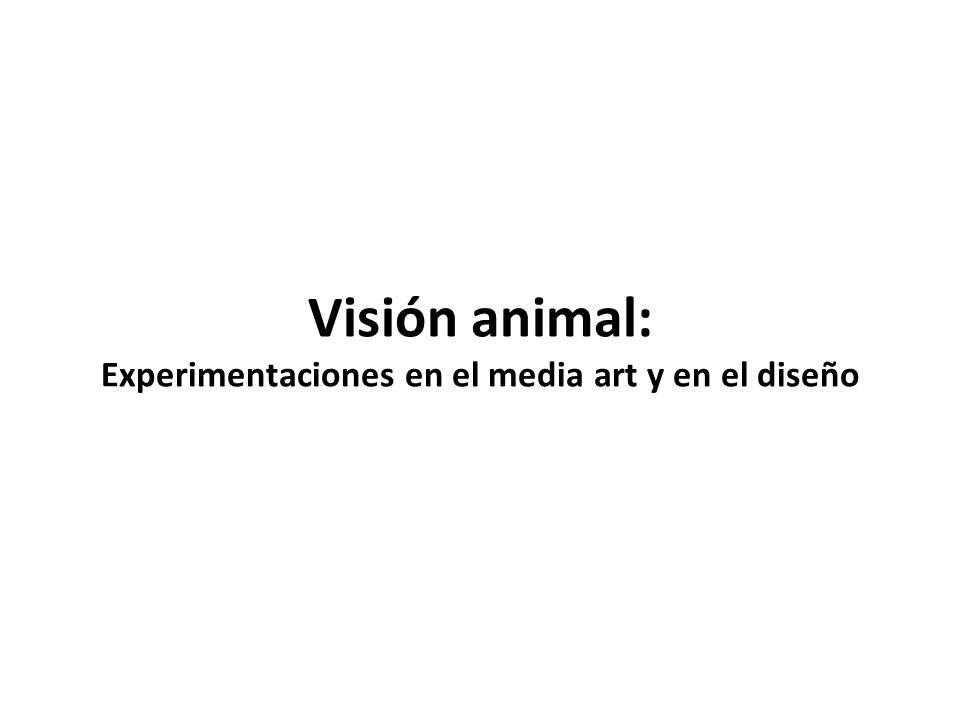 Visión animal: Experimentaciones en el media art y en el diseño