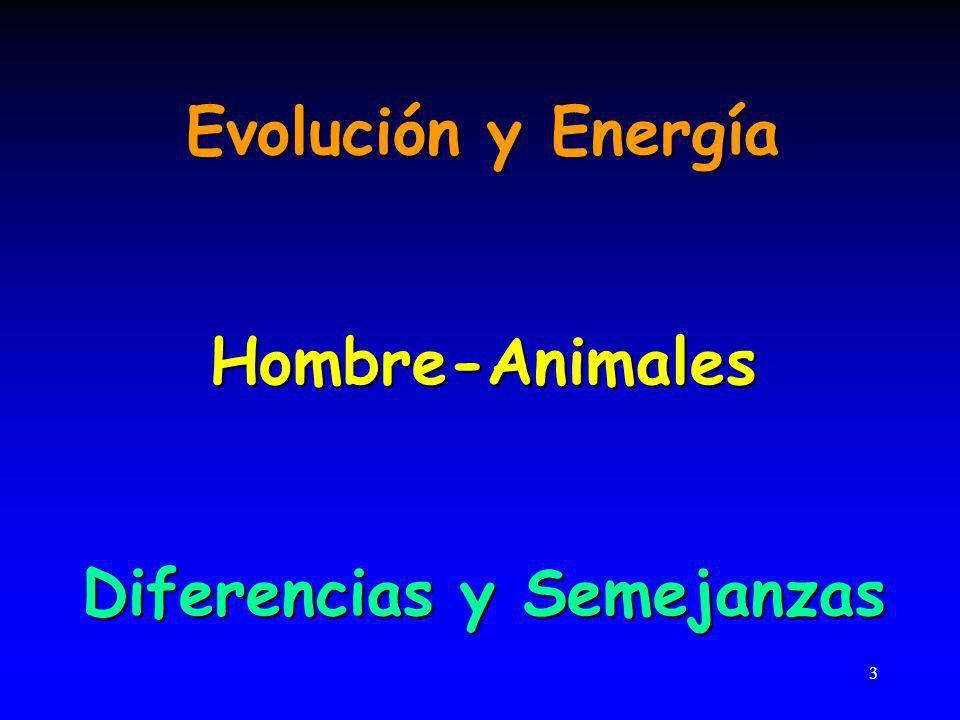 3 Evolución y Energía Hombre-Animales Diferencias y Semejanzas