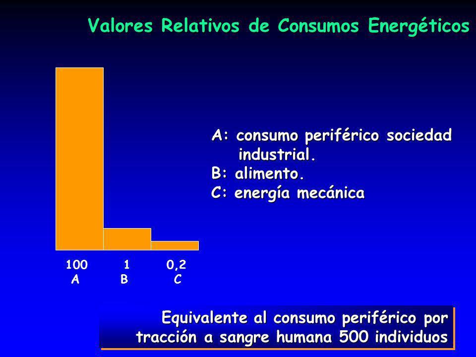 38 Equivalente al consumo periférico por tracción a sangre humana 500 individuos Valores Relativos de Consumos Energéticos 100 1 0,2 A B C A: consumo periférico sociedad industrial.