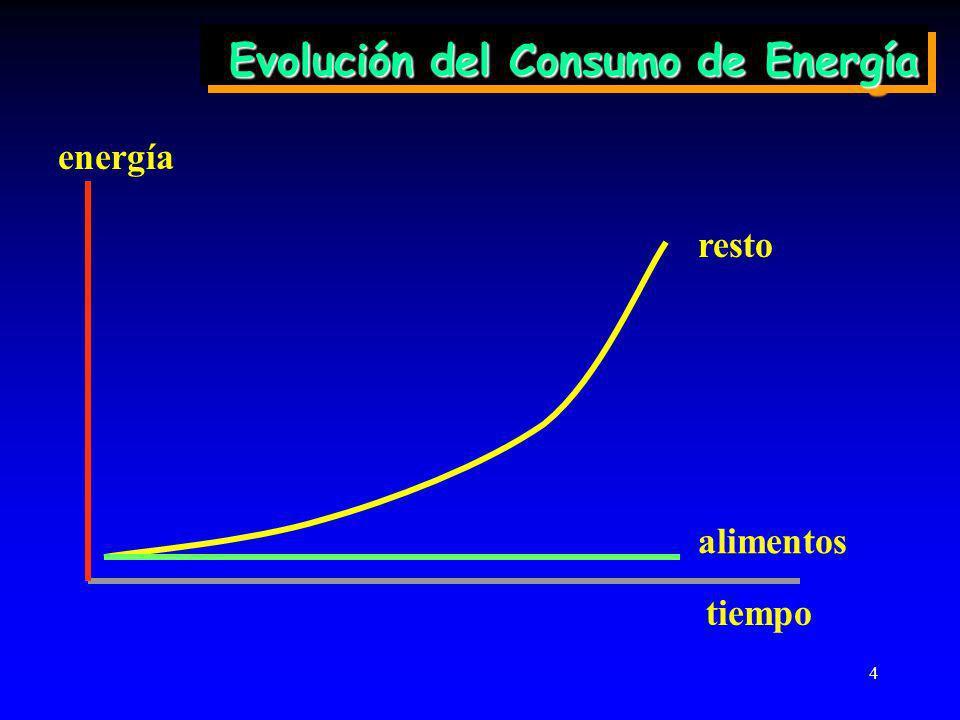 4 Evolución del Consumo de Energía energía resto alimentos tiempo