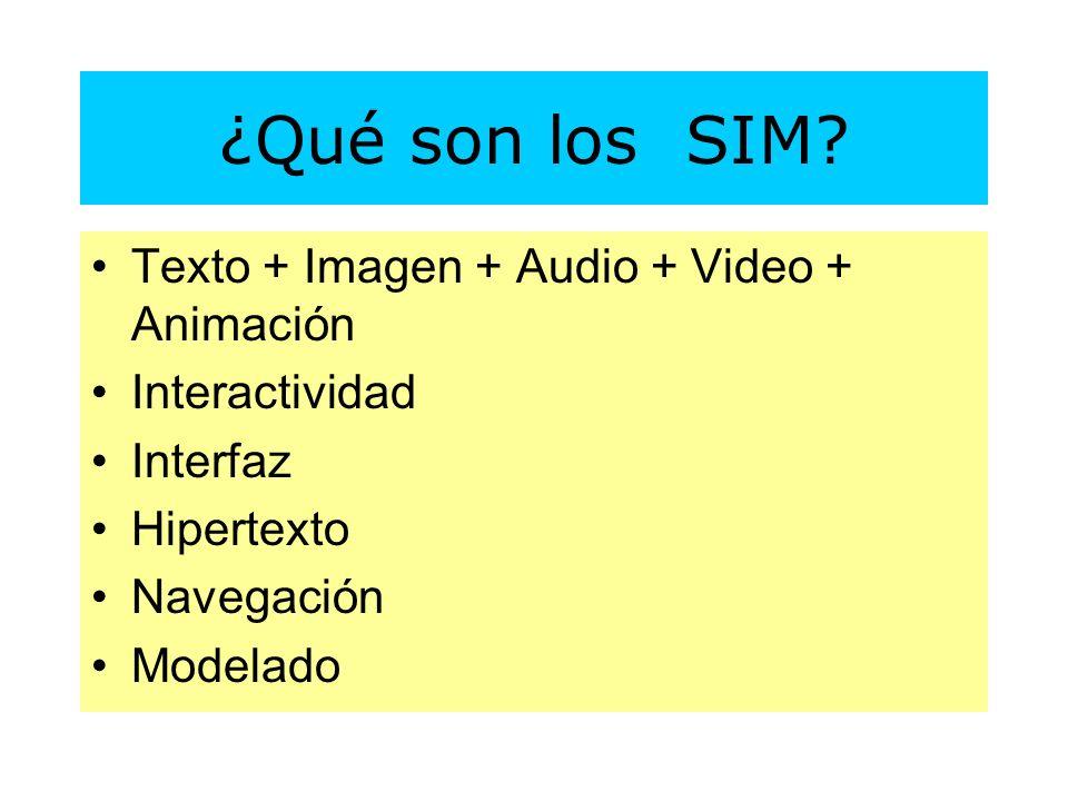 ¿Qué son los SIM.