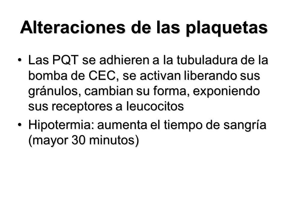 Alteraciones de las plaquetas Las PQT se adhieren a la tubuladura de la bomba de CEC, se activan liberando sus gránulos, cambian su forma, exponiendo sus receptores a leucocitosLas PQT se adhieren a la tubuladura de la bomba de CEC, se activan liberando sus gránulos, cambian su forma, exponiendo sus receptores a leucocitos Hipotermia: aumenta el tiempo de sangría (mayor 30 minutos)Hipotermia: aumenta el tiempo de sangría (mayor 30 minutos)
