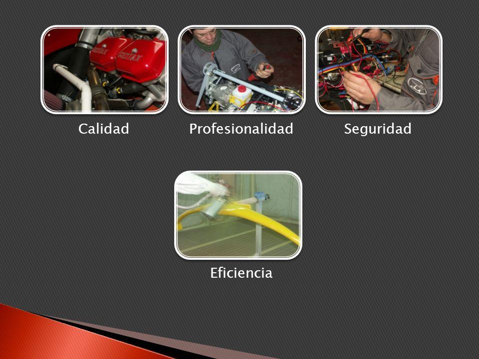 ELA 07 COUGAR MODELOS