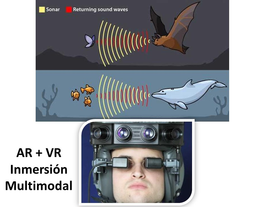 AR + VR Inmersión Multimodal