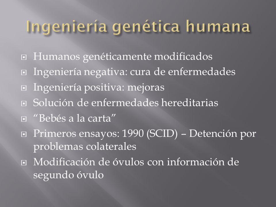 Humanos genéticamente modificados Ingeniería negativa: cura de enfermedades Ingeniería positiva: mejoras Solución de enfermedades hereditarias Bebés a