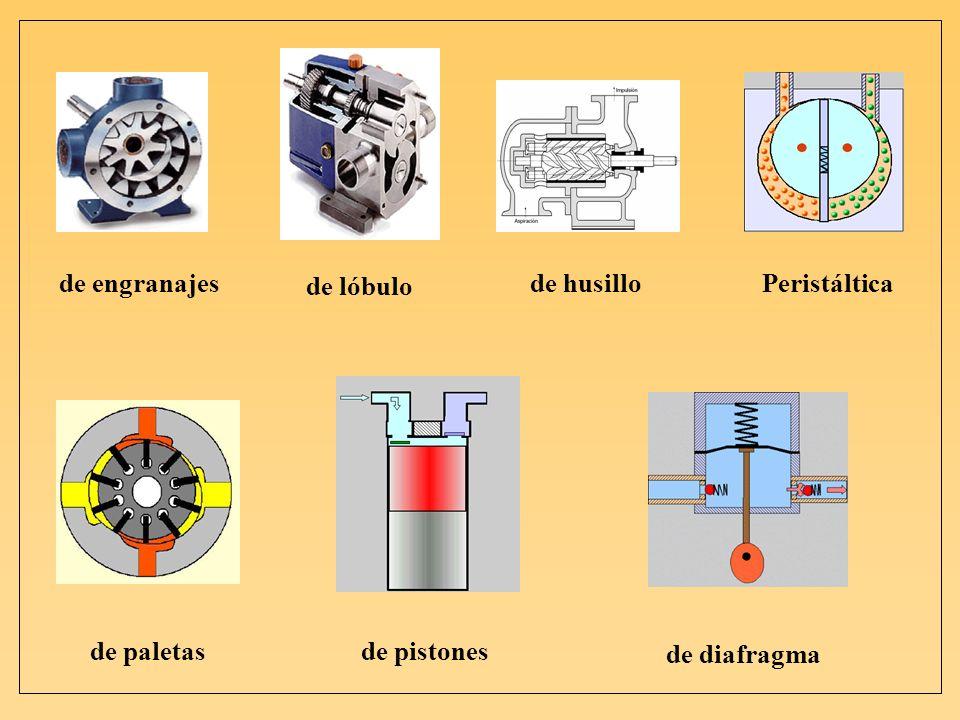 de engranajes de lóbulo de husillo Peristáltica de paletas de pistones de diafragma
