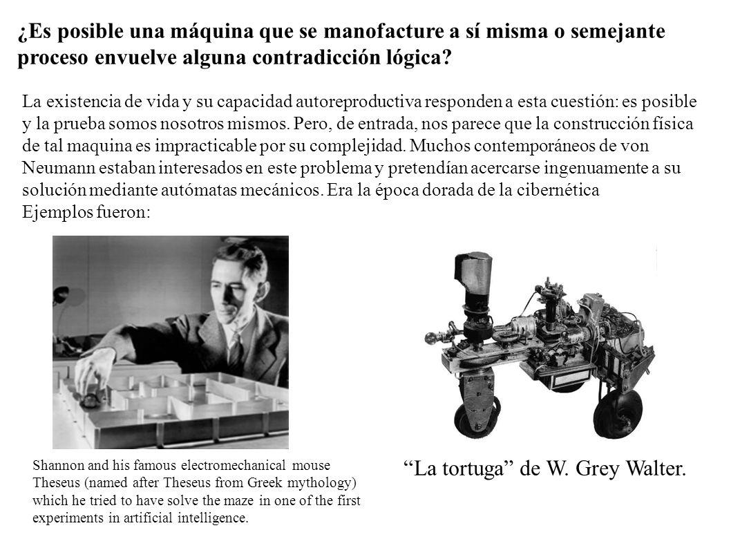 Neumann decidió abordar el problema de forma teórica.