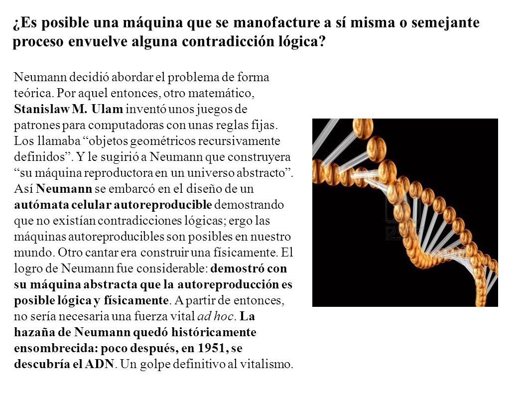 Neumann decidió abordar el problema de forma teórica. Por aquel entonces, otro matemático, Stanislaw M. Ulam inventó unos juegos de patrones para comp