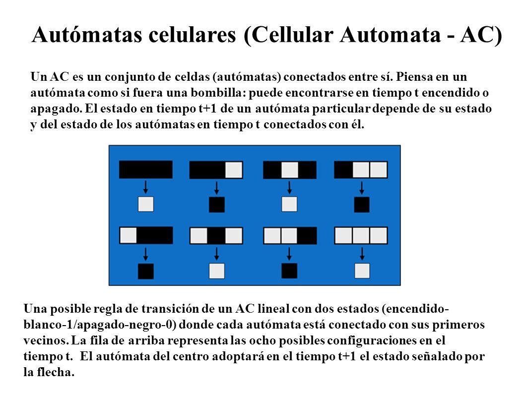 Un AC es un conjunto de celdas (autómatas) conectados entre sí. Piensa en un autómata como si fuera una bombilla: puede encontrarse en tiempo t encend