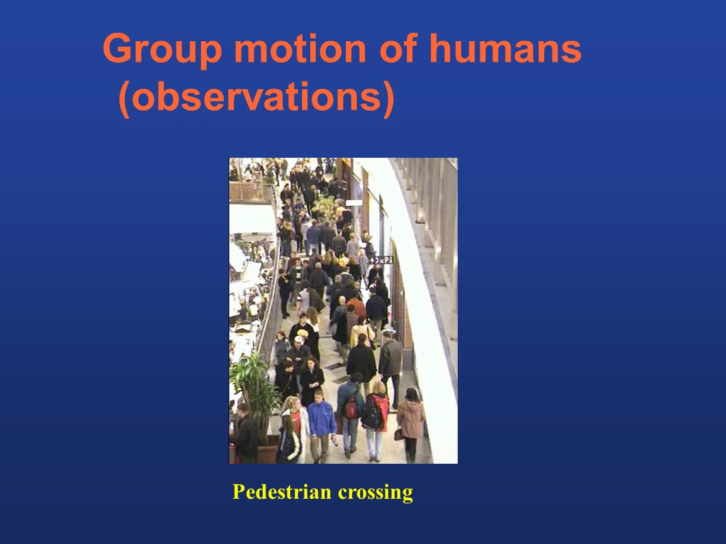 Group motion of humans (observations) Pedestrian crossing