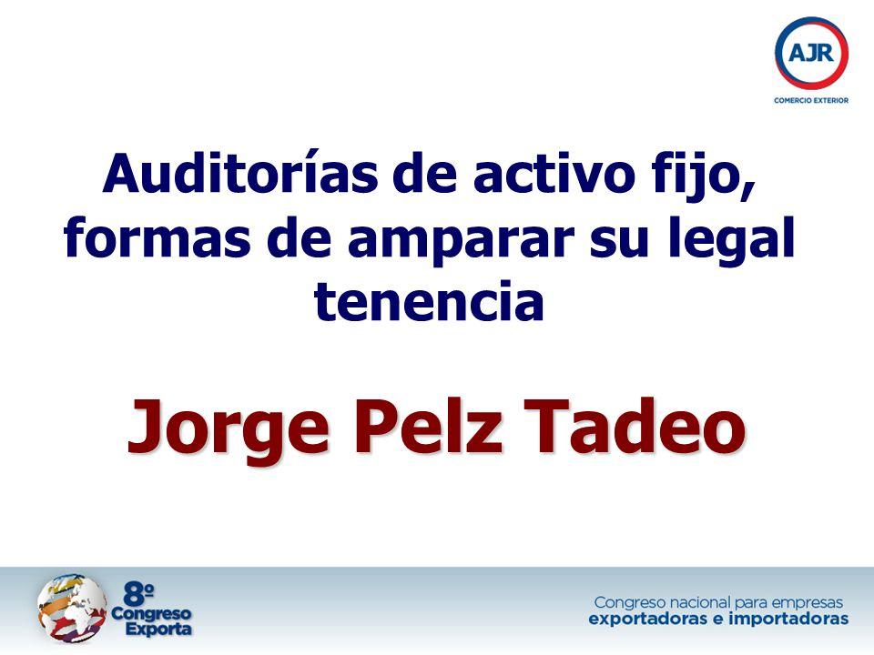 Auditorías de activo fijo, formas de amparar su legal tenencia Jorge Pelz Tadeo