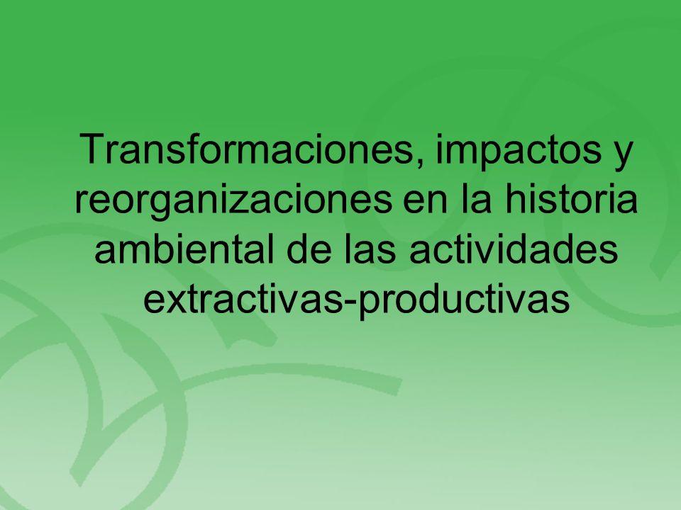 Transformaciones, impactos y reorganizaciones en la historia ambiental de las actividades extractivas-productivas