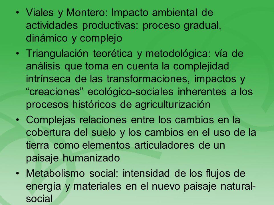De conjuntos ecosistémicos boscoso- tropicales a conjuntos ecosistémicos de plantación tropical De un sistema ecológico biodiverso, escasamente humanizado a un sistema tecno-socio-ambiental ecosistémicamente simplificado, socialmente complejo Creciente tránsito al predominio de energía exosomática en detrimento de la endosomática