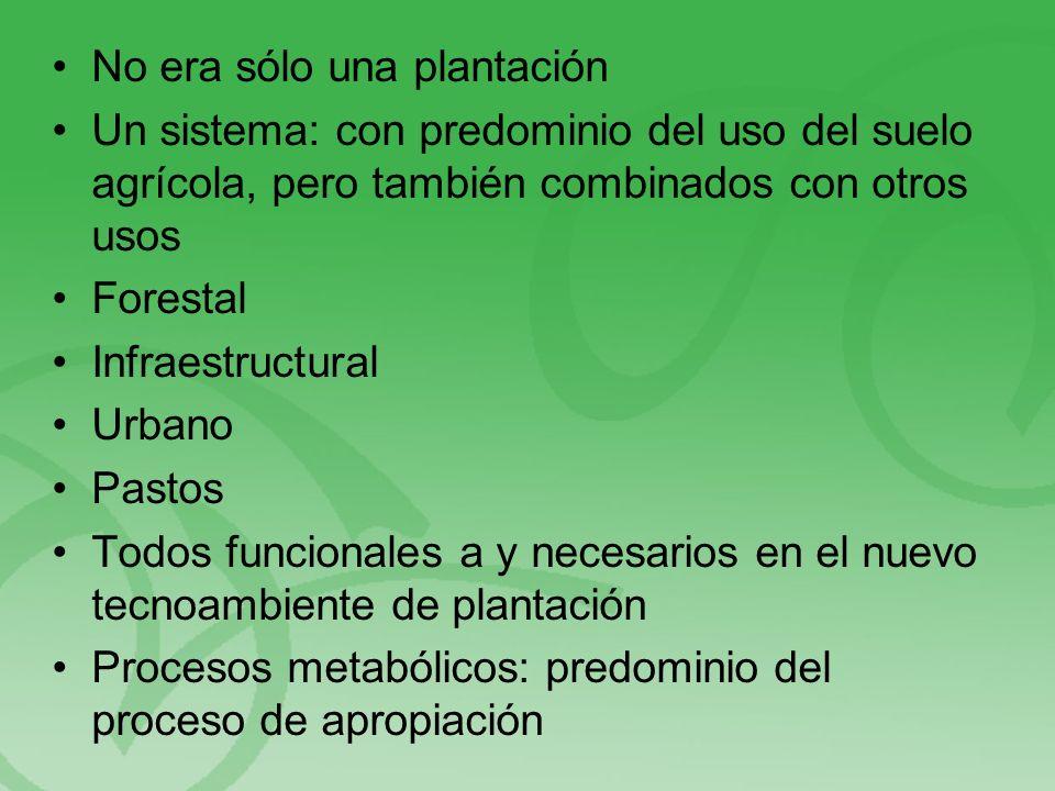 No era sólo una plantación Un sistema: con predominio del uso del suelo agrícola, pero también combinados con otros usos Forestal Infraestructural Urbano Pastos Todos funcionales a y necesarios en el nuevo tecnoambiente de plantación Procesos metabólicos: predominio del proceso de apropiación