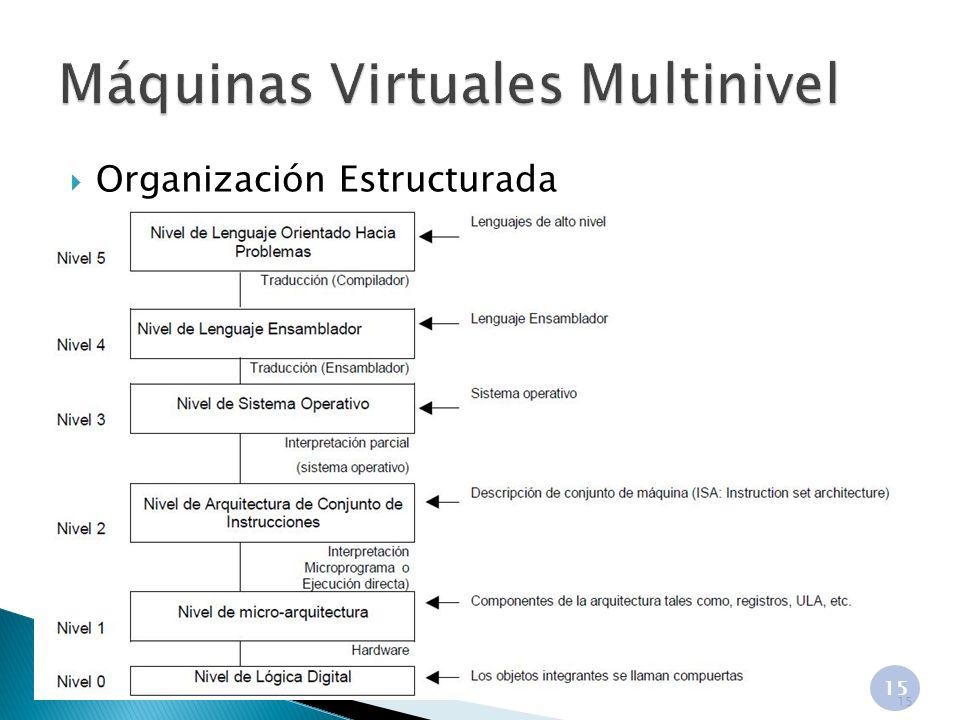 Organización Estructurada 15