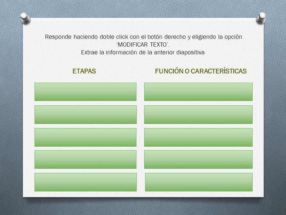 Responde haciendo doble click con el botón derecho y eligiendo la opción MODIFICAR TEXTO. Extrae la información de la anterior diapositiva ETAPASFUNCI