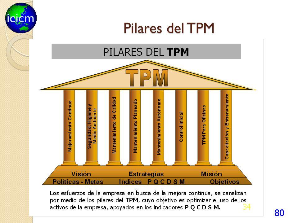 icicm Pilares del TPM 80