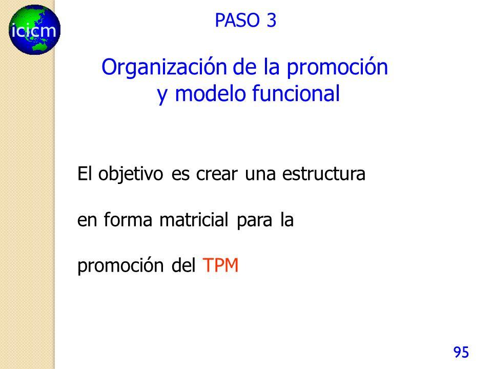 icicm 95 El objetivo es crear una estructura en forma matricial para la promoción del TPM PASO 3 Organización de la promoción y modelo funcional