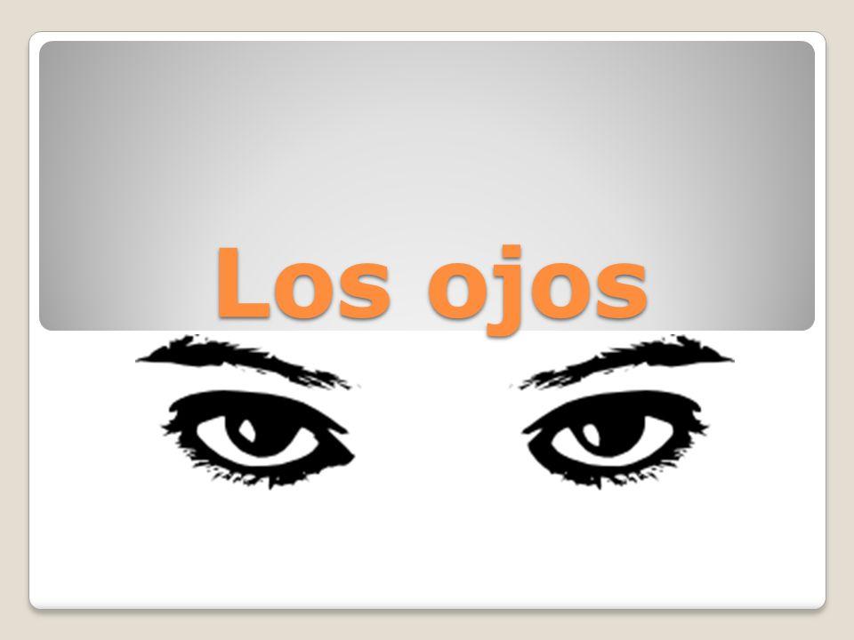 Refrán Ejemplos de los ojos Octavio Paz El poema Tus Ojos por Octavio Paz Vocabulario Repaso del vocabulario Otros Refranes