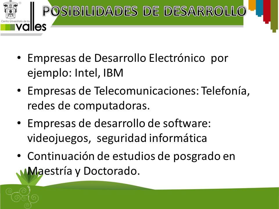 Empresas de Desarrollo Electrónico por ejemplo: Intel, IBM Empresas de Telecomunicaciones: Telefonía, redes de computadoras. Empresas de desarrollo de