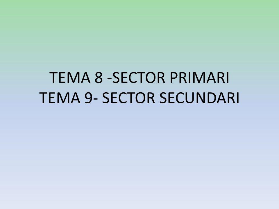 TEMA 8 -SECTOR PRIMARI TEMA 9- SECTOR SECUNDARI