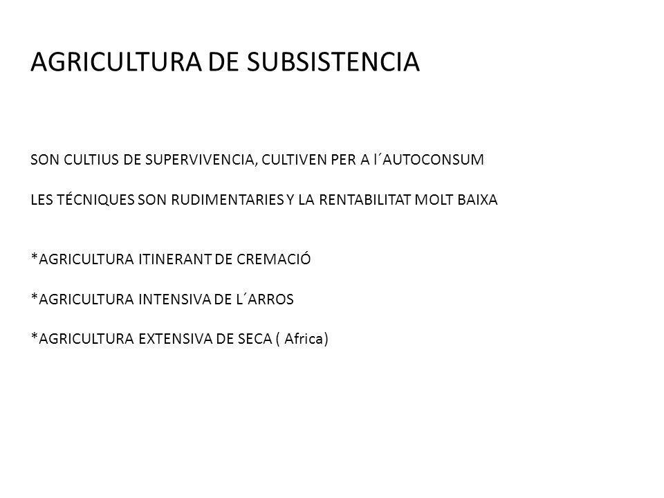 AGRICULTURA DE SUBSISTENCIA SON CULTIUS DE SUPERVIVENCIA, CULTIVEN PER A l´AUTOCONSUM LES TÉCNIQUES SON RUDIMENTARIES Y LA RENTABILITAT MOLT BAIXA *AG