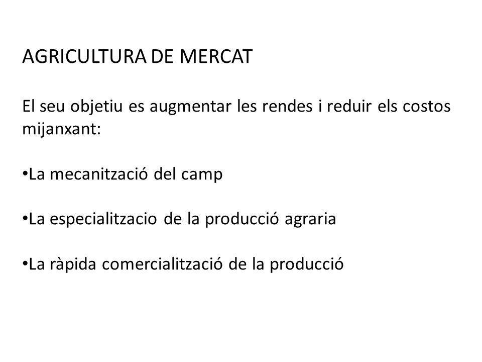AGRICULTURA DE MERCAT El seu objetiu es augmentar les rendes i reduir els costos mijanxant: La mecanització del camp La especialitzacio de la producci