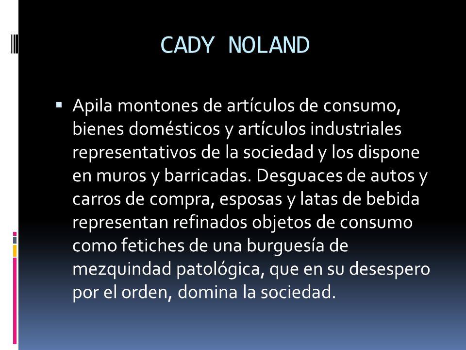 CADY NOLAND Apila montones de artículos de consumo, bienes domésticos y artículos industriales representativos de la sociedad y los dispone en muros y
