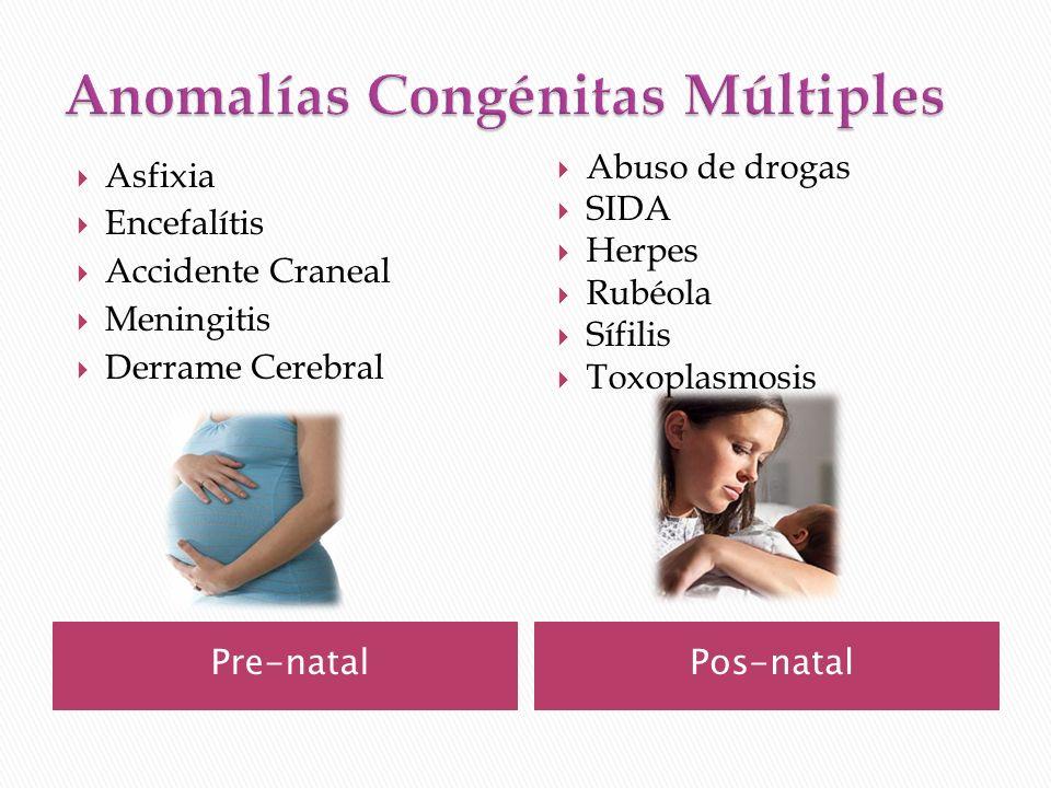 Pre-natalPos-natal Asfixia Encefalítis Accidente Craneal Meningitis Derrame Cerebral Abuso de drogas SIDA Herpes Rubéola Sífilis Toxoplasmosis