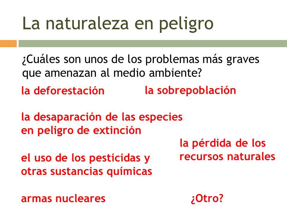 La naturaleza en peligro ¿Cuáles son unos de los problemas más graves que amenazan al medio ambiente? la deforestación la desaparación de las especies