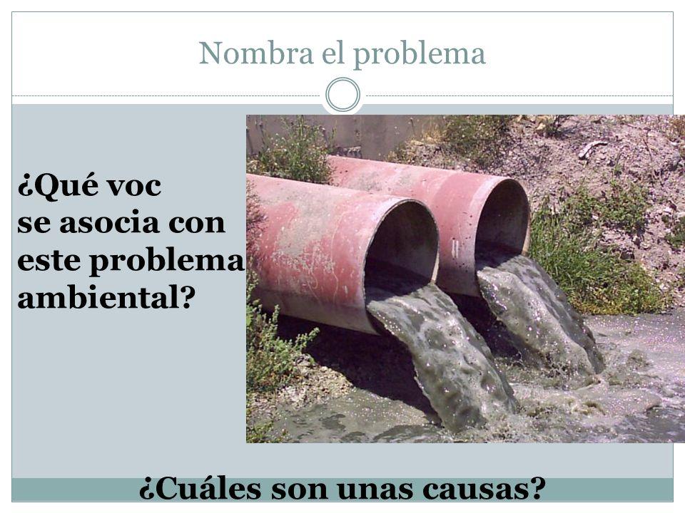Nombra el problema ¿Cuáles son unas causas? ¿Qué voc se asocia con este problema ambiental?
