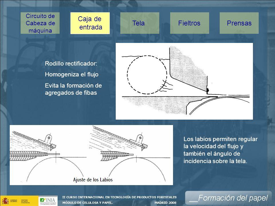 Caja de entrada TelaPrensasFieltros Circuito de Cabeza de máquina Rodillo rectificador: Homogeniza el flujo Evita la formación de agregados de fibas Los labios permiten regular la velocidad del flujo y también el ángulo de incidencia sobre la tela.