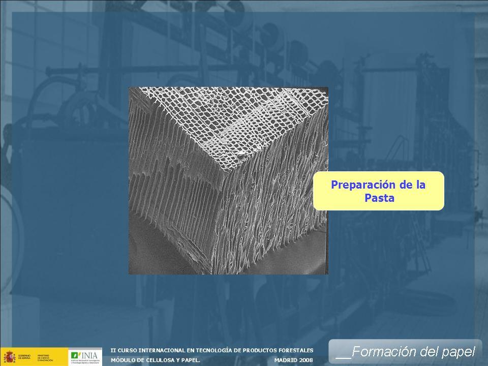 Caja de entrada Tela PrensasFieltros Circuito de Cabeza de máquina La tela es una cinta sin fin de malla metálica (actualmente de materiales sintéticos), sobre la que se forma la hoja.