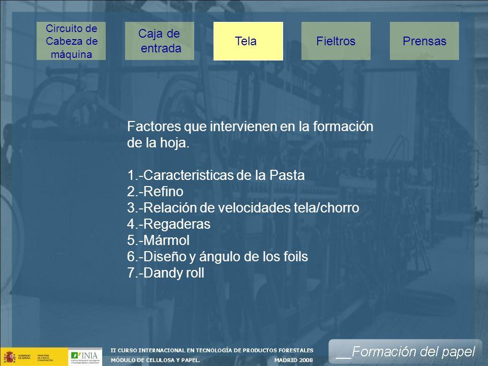 Factores que intervienen en la formación de la hoja.