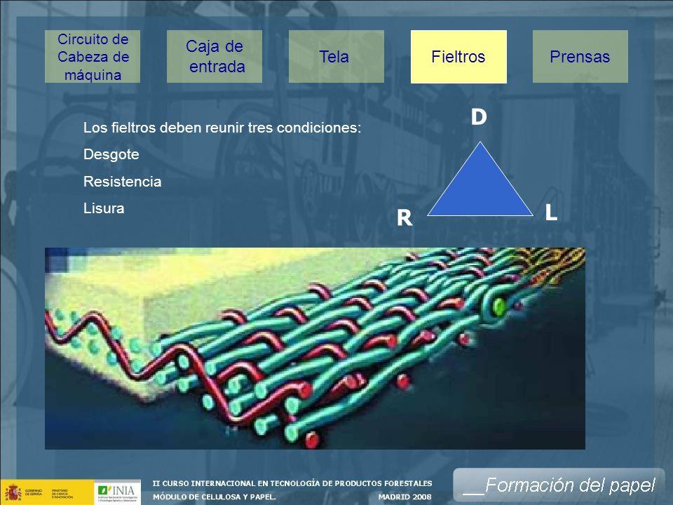Los fieltros deben reunir tres condiciones: Desgote Resistencia Lisura D R L Caja de entrada TelaPrensas Fieltros Circuito de Cabeza de máquina