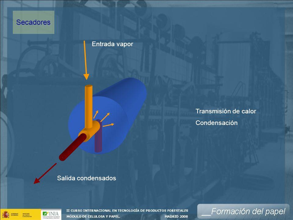 Salida condensados Entrada vapor Transmisión de calor Condensación Secadores