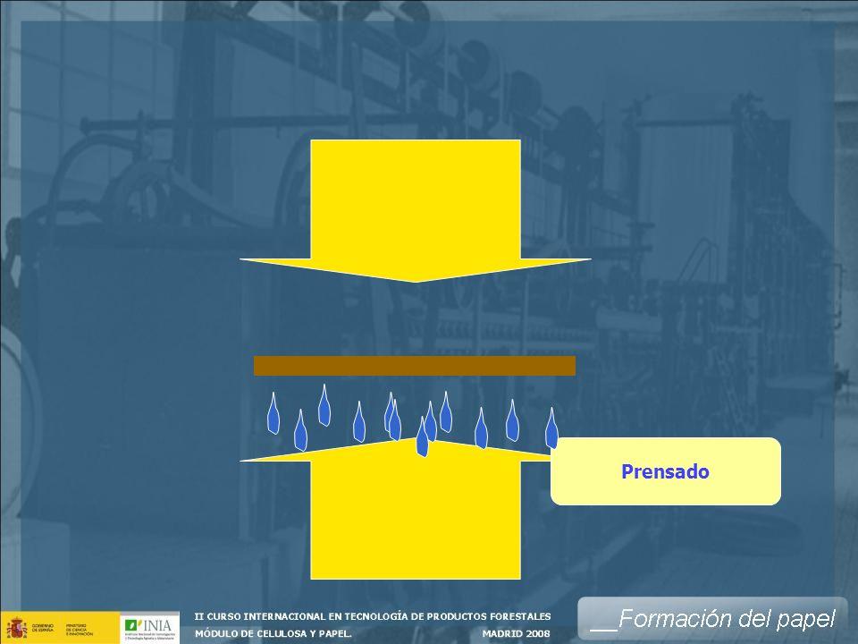 PRENSA ENCOLADORA (SIZE PRESS) Secadores vertical horizontal inclinada Encolado superficial Almidón Otros encolantes Colorantes Estucos