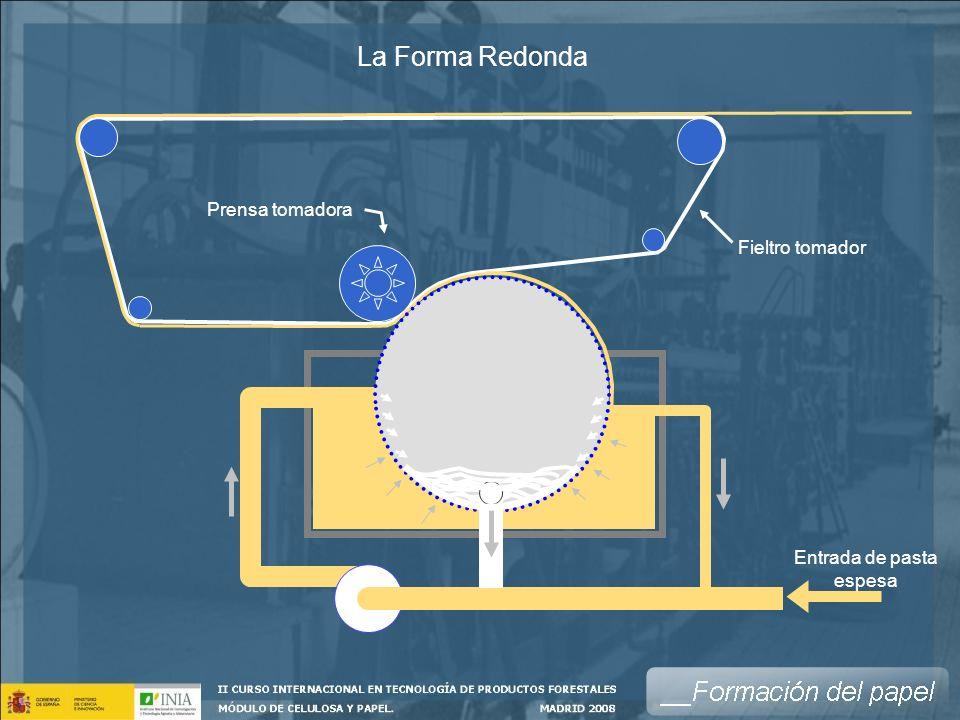 La Forma Redonda Entrada de pasta espesa Fieltro tomador Prensa tomadora
