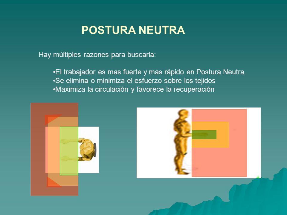 POSTURA NEUTRA Hay múltiples razones para buscarla: El trabajador es mas fuerte y mas rápido en Postura Neutra. Se elimina o minimiza el esfuerzo sobr