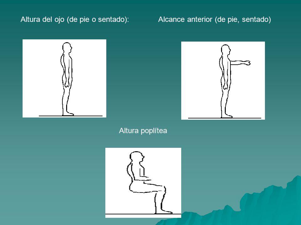 Altura del ojo (de pie o sentado):Alcance anterior (de pie, sentado) Altura poplítea
