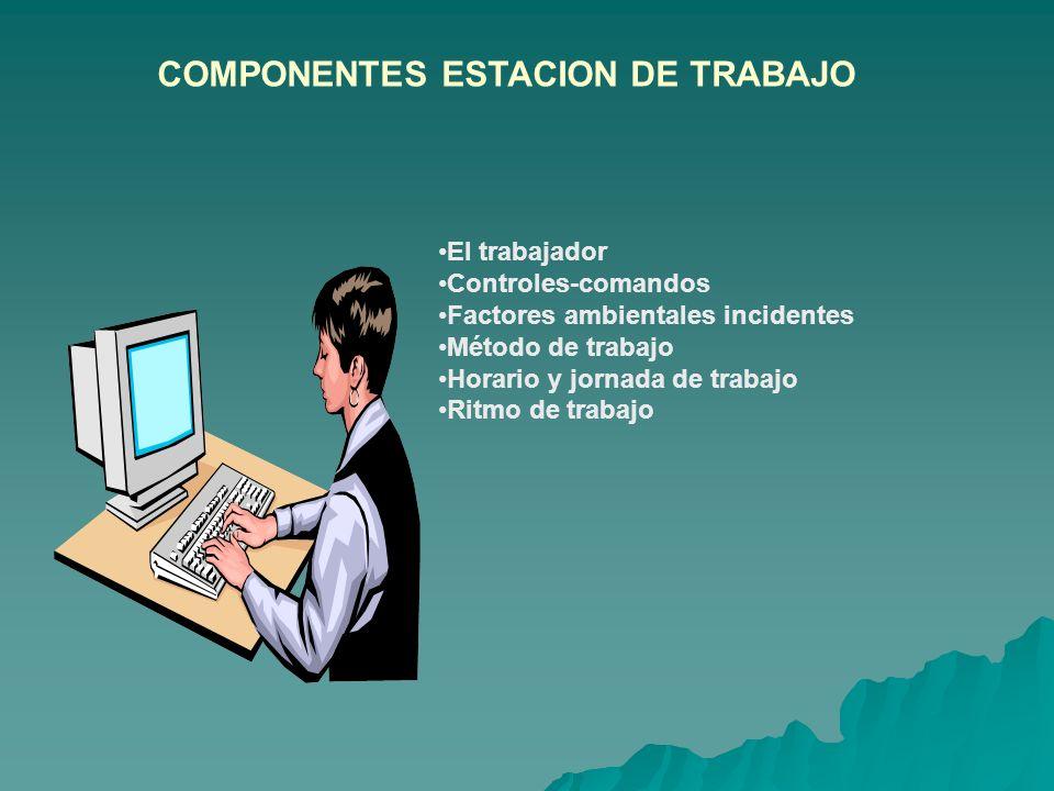 COMPONENTES ESTACION DE TRABAJO El trabajador Controles-comandos Factores ambientales incidentes Método de trabajo Horario y jornada de trabajo Ritmo