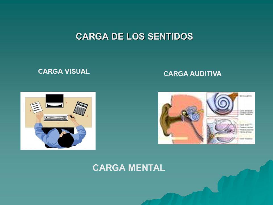 Antropometría Estudio de las personas, en términos de sus dimensiones físicas.
