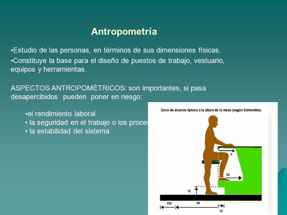 Antropometría Estudio de las personas, en términos de sus dimensiones físicas. Constituye la base para el diseño de puestos de trabajo, vestuario, equ