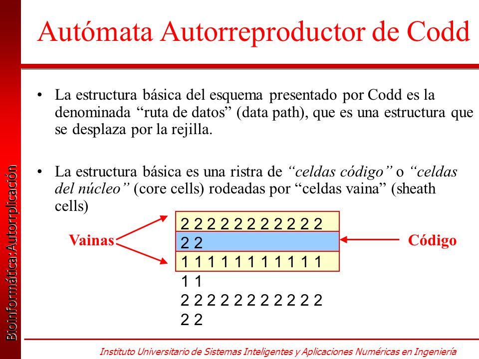 Bioinformática:Autorrplicación Bioinformática:Autorrplicación Instituto Universitario de Sistemas Inteligentes y Aplicaciones Numéricas en Ingeniería Autómata Autorreproductor de Codd La estructura básica del esquema presentado por Codd es la denominada ruta de datos (data path), que es una estructura que se desplaza por la rejilla.