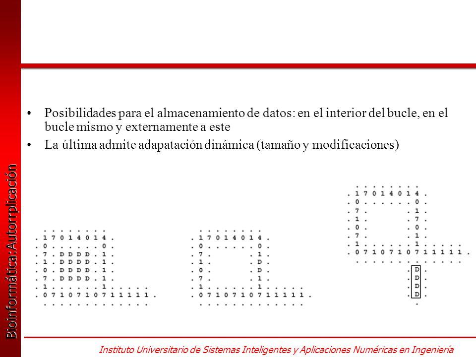 Bioinformática:Autorrplicación Bioinformática:Autorrplicación Instituto Universitario de Sistemas Inteligentes y Aplicaciones Numéricas en Ingeniería Posibilidades para el almacenamiento de datos: en el interior del bucle, en el bucle mismo y externamente a este La última admite adapatación dinámica (tamaño y modificaciones)