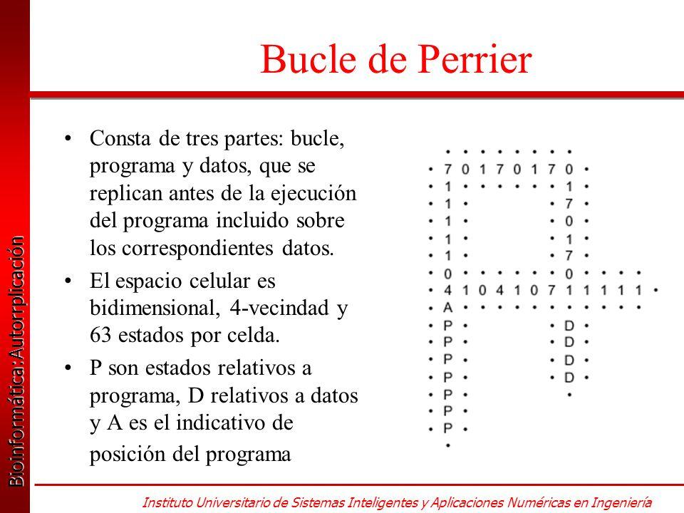 Bioinformática:Autorrplicación Bioinformática:Autorrplicación Instituto Universitario de Sistemas Inteligentes y Aplicaciones Numéricas en Ingeniería