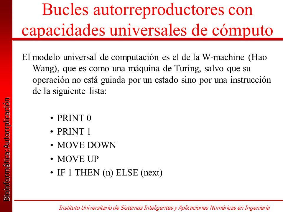 Bioinformática:Autorrplicación Bioinformática:Autorrplicación Instituto Universitario de Sistemas Inteligentes y Aplicaciones Numéricas en Ingeniería Bucles autorreproductores con capacidades universales de cómputo El modelo universal de computación es el de la W-machine (Hao Wang), que es como una máquina de Turing, salvo que su operación no está guiada por un estado sino por una instrucción de la siguiente lista: PRINT 0 PRINT 1 MOVE DOWN MOVE UP IF 1 THEN (n) ELSE (next)