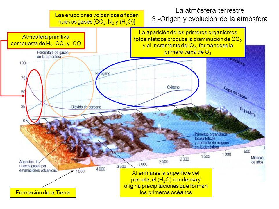 La atmósfera terrestre 3.-Origen y evolución de la atmósfera Formación de la Tierra Atmósfera primitiva compuesta de H 2, CO 2 y CO Las erupciones volcánicas añaden nuevos gases [CO 2, N 2 y (H 2 O)] Al enfriarse la superficie del planeta, el (H 2 O) condensa y origina precipitaciones que forman los primeros océanos La aparición de los primeros organismos fotosintéticos produce la disminución de CO 2 y el incremento del O 2, formándose la primera capa de O 3