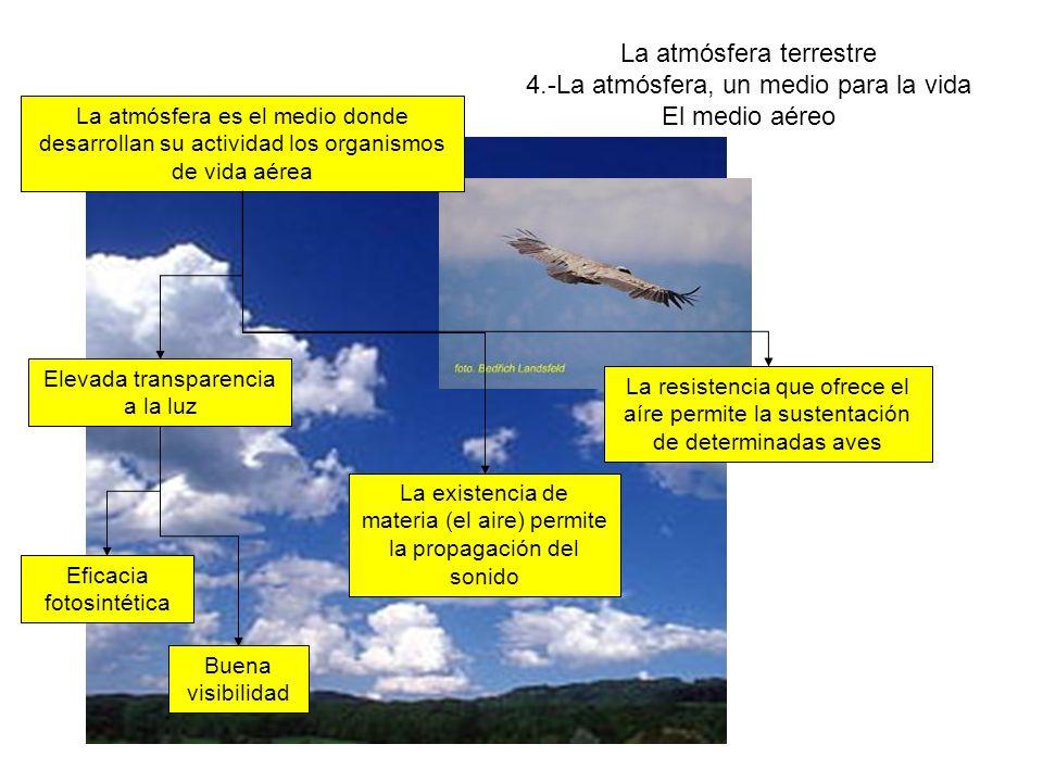 La atmósfera terrestre 4.-La atmósfera, un medio para la vida ACTIVIDADES 9 10 11